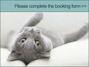 Please complete this booking form